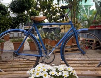 recuperar_bicicleta